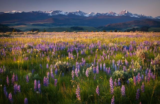If you need a vacation in the U.S. that will take your breath away, then visit Western Montana. I am a native Montanan and there is nothing like it.