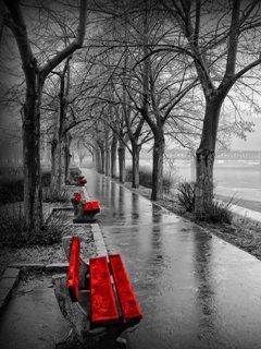 1315229860_Rainy_Day