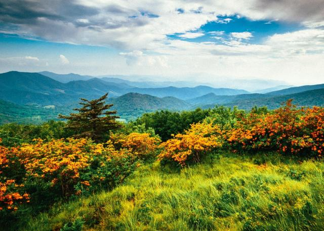 smoky-mountains-appalachian-trail-1