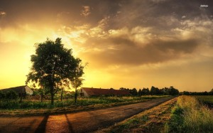 14150-sunset-on-the-countryside-1920x1200-world-wallpaper