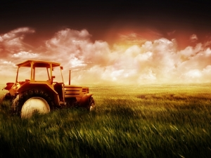 tractor-and-grass